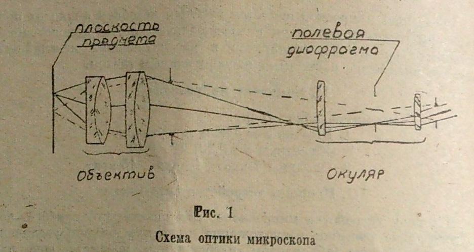 школьный микроскоп шм-1 (рис. 1)