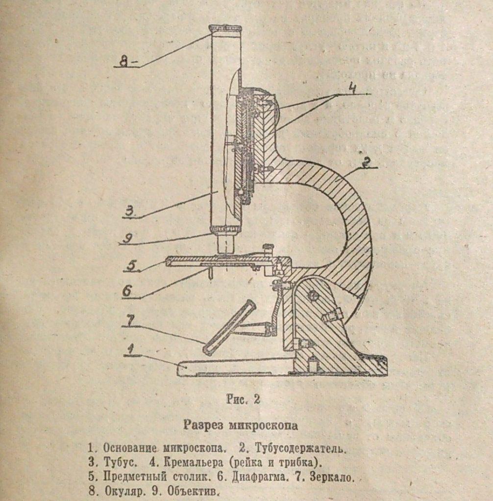 микроскоп школьный шм-1 рис. 2