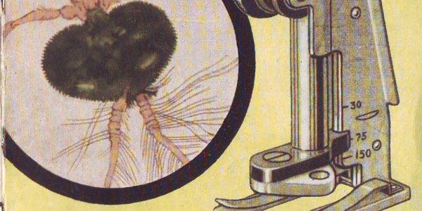 описание карманного микроскопа мдк-2