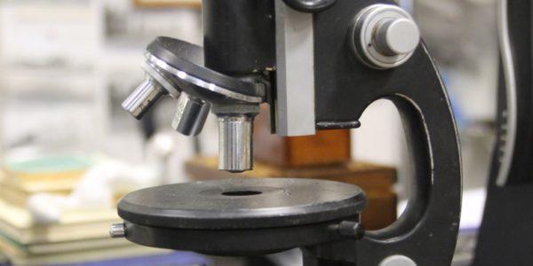 микроскоп м10