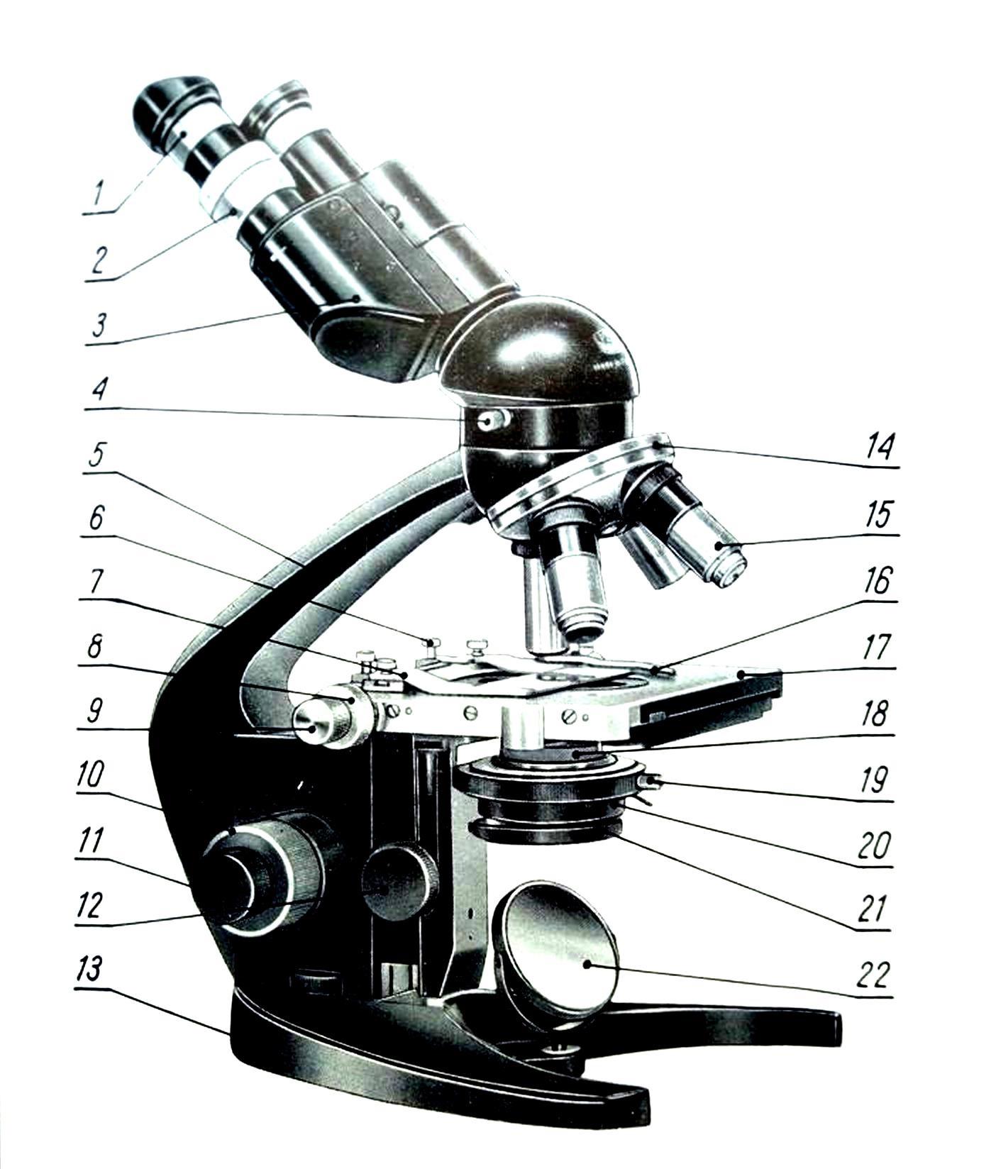 микроскоп ms5b