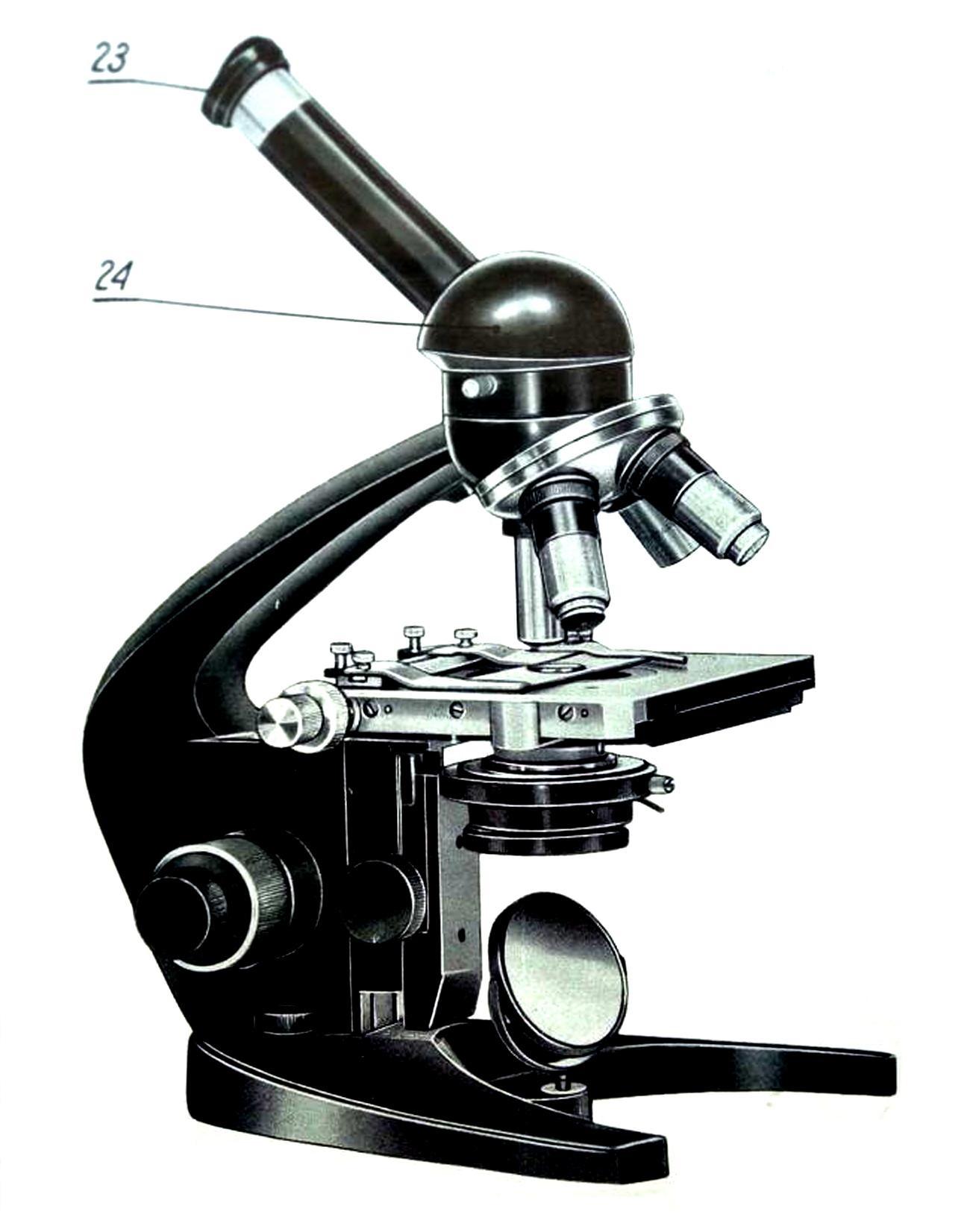 микроскоп ms5m