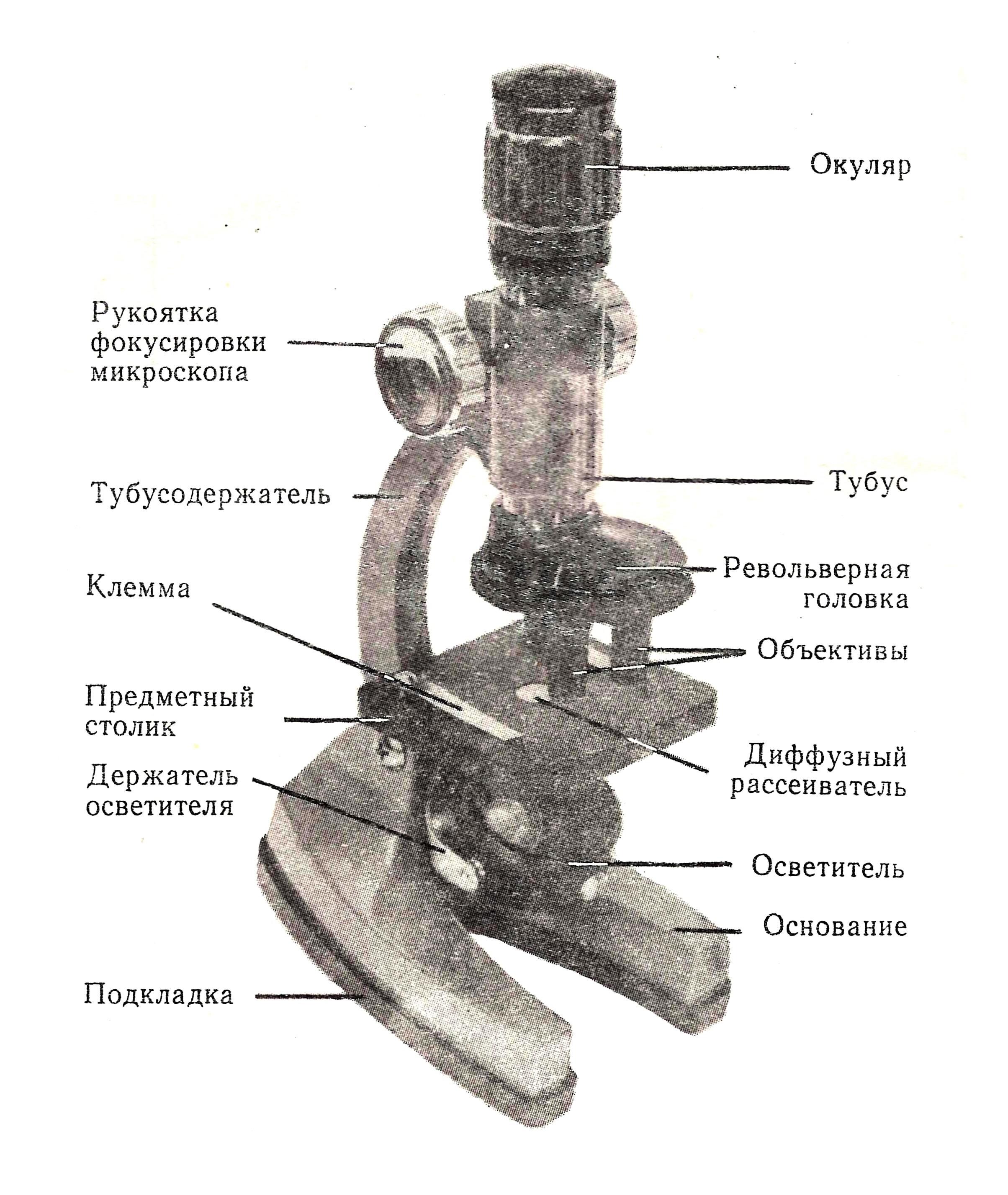 микроскоп детский Аналит-1 рис.1
